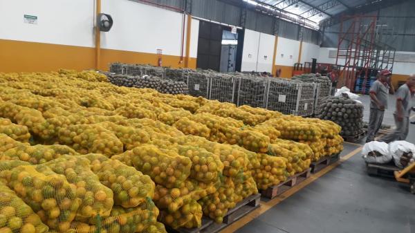 Escolas do Estado recebem mais de 200 toneladas   em produtos agrícolas