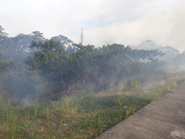 Fogo atinge área de mata na Avenida das Torres em Manaus; nº de ocorrências chega a 13