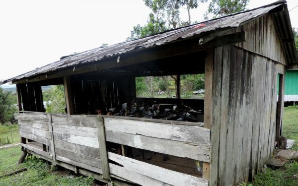 No Amazonas, 42% dos municípios têm 'ineficiência crítica' em gestão educacional