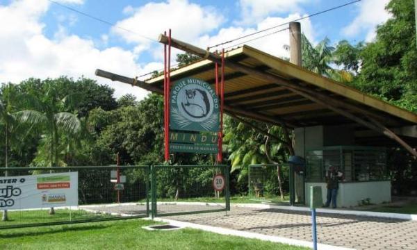 Adolescentes esfaqueiam diretor do Parque do Mindu após tentativa de roubo de açaí