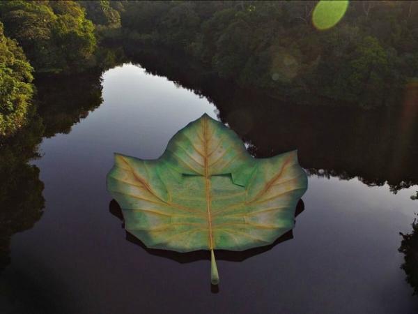 Palco do Amazônia Live será reciclado para virar ecobags do Rock in Rio
