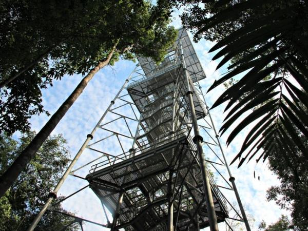 Programa oferece desconto em visitas no Museu da Amazônia, em Manaus