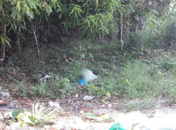 Corpo de homem que teve olhos e nariz arrancados é achado, na Zona Norte de Manaus