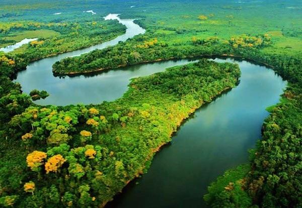 Famosos fazem campanha contra exploração de minério na Amazônia
