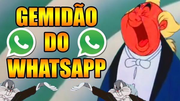 Vídeo: 'Gemidão do WhatsApp' constrange vereador durante sessão plenária