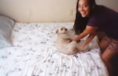 Mulher maltrata covardemente cachorro e revolta internautas
