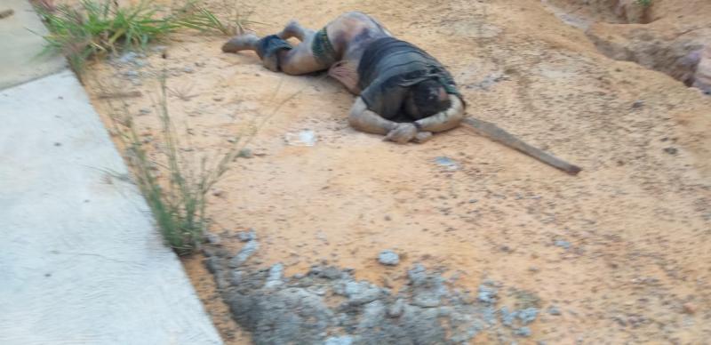 Corpo é encontrado com mãos amarradas no Tarumã